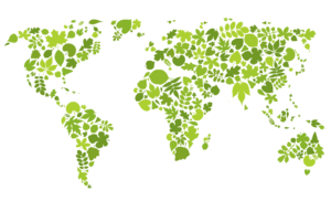 world map in green leaves