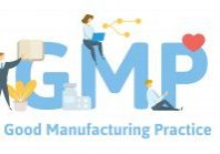 gmp graphic