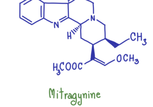 hand drawn diagram of mitragynine molecule